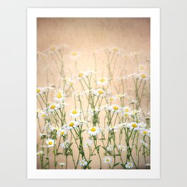 Layered Daisy Chains Art Print
