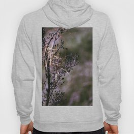 Violet Anns Lace Hoody