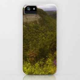 Tranquil World iPhone Case