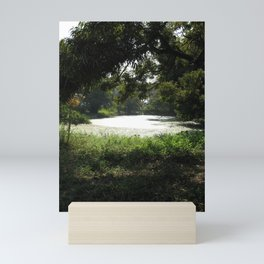 The Pond Mini Art Print
