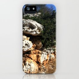 Ancient Rock Wall iPhone Case