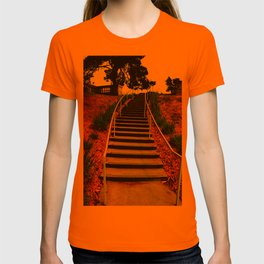 Your Light Rail Service T-shirt