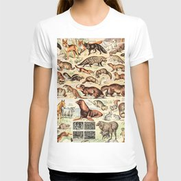 Cute Animals // Fourrures by Adolphe Millot XL 19th Century Science Textbook Diagram Artwork T-shirt