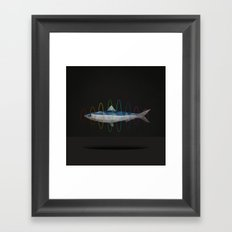flying sardine Framed Art Print