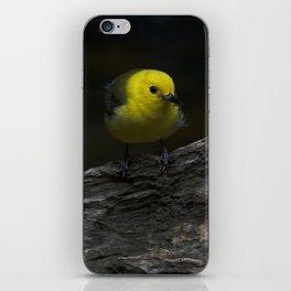 Yellow Songbird iPhone Skin