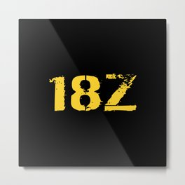 18Z Special Forces Metal Print
