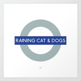 Raining cat & dogs Art Print