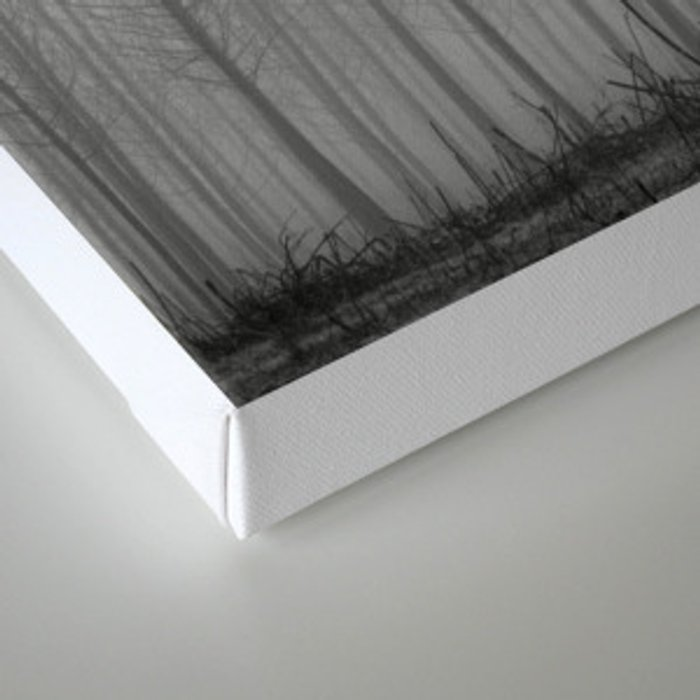 """Rectilineorum"". Bw Canvas Print"