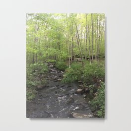 Connecticut Spring River Metal Print