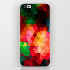 Color Contrast iPhone & iPod Skin