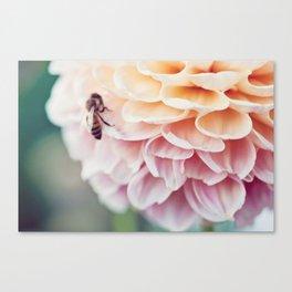 Bees III Canvas Print