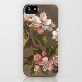 Hummingbird and Apple Blossoms by Martin Johnson Heade, 1875 iPhone Case