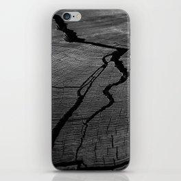 Ancient Tree Rings iPhone Skin