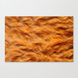 Iron water stream Canvas Print