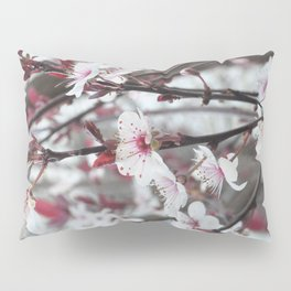 Plum Tree Pillow Sham