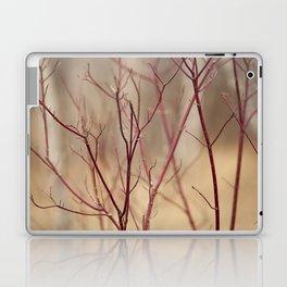 Canadian Prairies 13 Laptop & iPad Skin