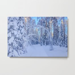 Magic archway in winter Metal Print