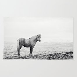 Horse in Icelandic Landscape Photograph Rug