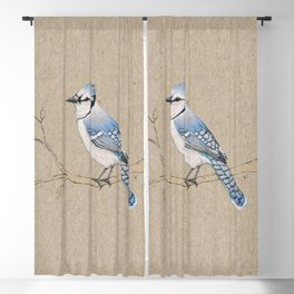 Blue jay Blackout Curtain