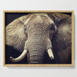 Elephant portrait Serving Tray