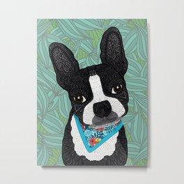 Tropical Boston Terrier Boy Metal Print