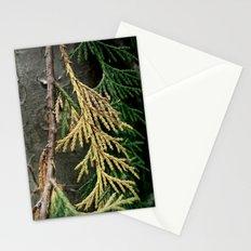 Cedar branch Stationery Cards
