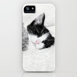 Kitten and teddy iPhone Case