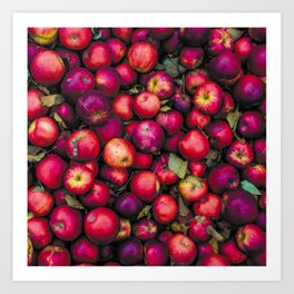 Rosy Red Apples Art Print