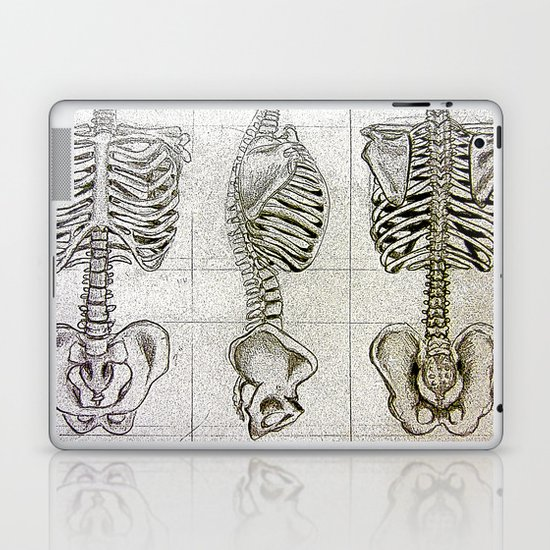 Bones Laptop & iPad Skin