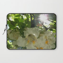 White flowers, with Orange and brown details and Sunburst (Post Tree Flower) Laptop Sleeve