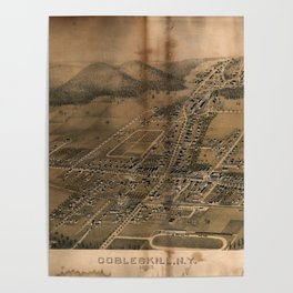 Aerial View of Cobleskill, New York (1883) Poster