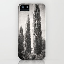 Umbrian Cypress iPhone Case