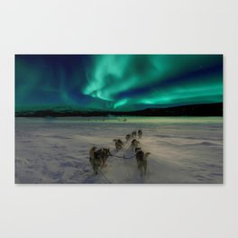 Winter Northern Lights Dog Sled (Color) Canvas Print