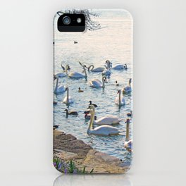 The swans iPhone Case