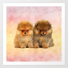 Cute Pomeranian Puppies Art Print