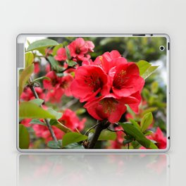 JAPANESE QUINCE Laptop & iPad Skin