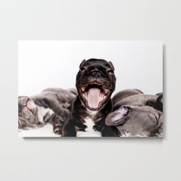 It's a Ruff life being a Puppy! Metal Print