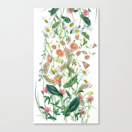 Vibrant meadow wild flowers Canvas Print