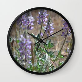 Dusty Desert Lupine Wall Clock