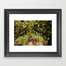 nature at its best Framed Art Print
