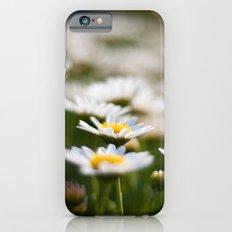 Daisy Field iPhone 6s Slim Case
