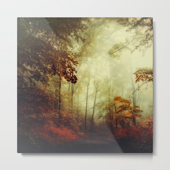 That's not my way - misty woodland Metal Print