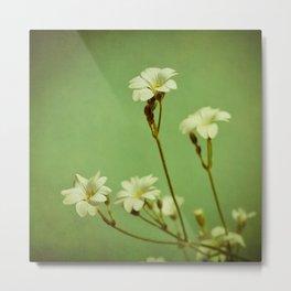 Florets in May Metal Print