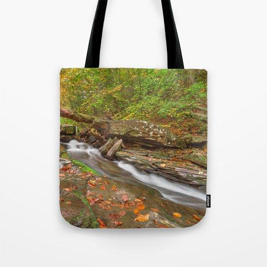 Ricketts Glen Autumn Stream Tote Bag