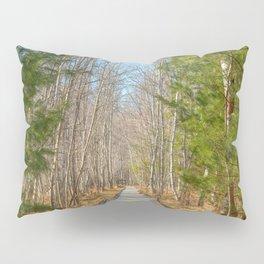 Jesup Boardwalk Trail Pillow Sham