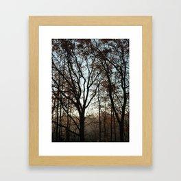 Tree Fingers Framed Art Print