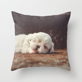 cute sleeping puppy Throw Pillow