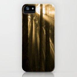 Polipoli Evening Light iPhone Case