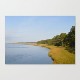 Marsh and Pines Canvas Print