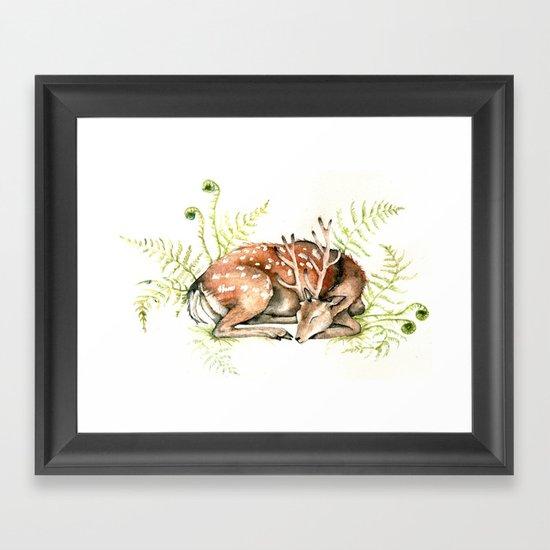 Sleeping Deer Framed Art Print